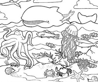 Download Nice Ocean Animal Coloring Sheet For Kids Online