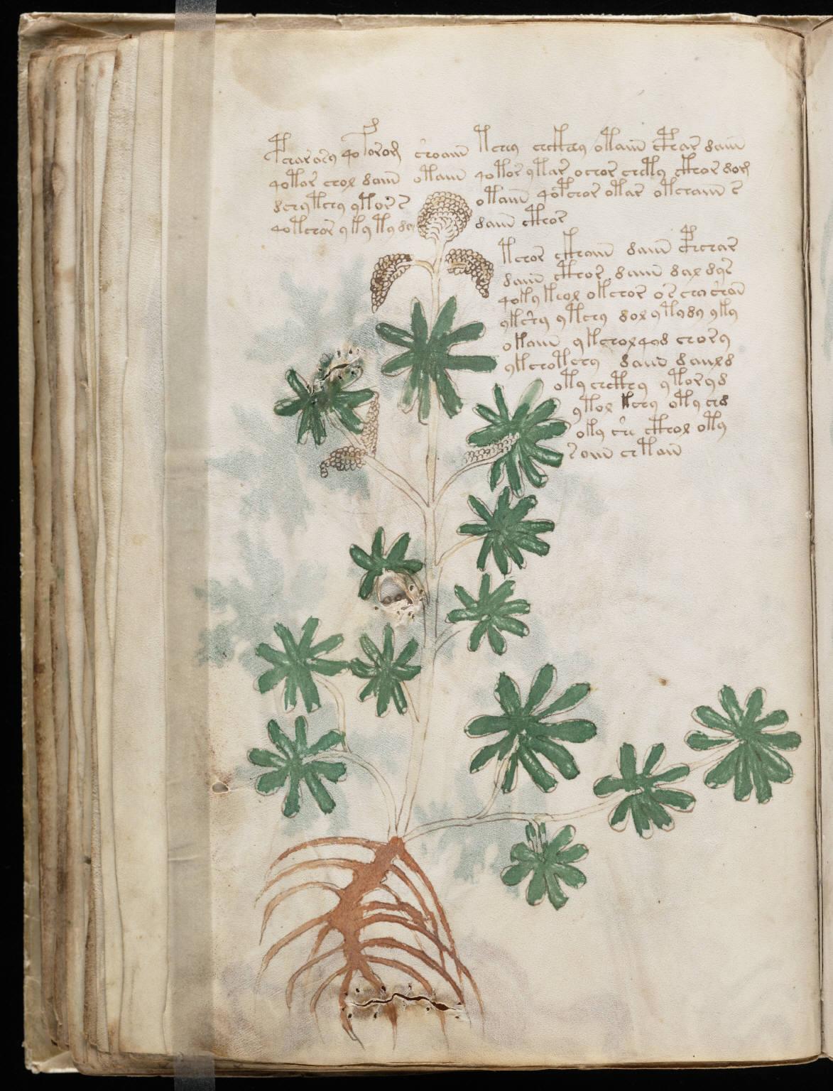 manuscrito070