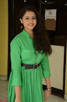 Geethanjali in Green Dress at Mixture Potlam Movie Pressmeet March 2017 043.JPG