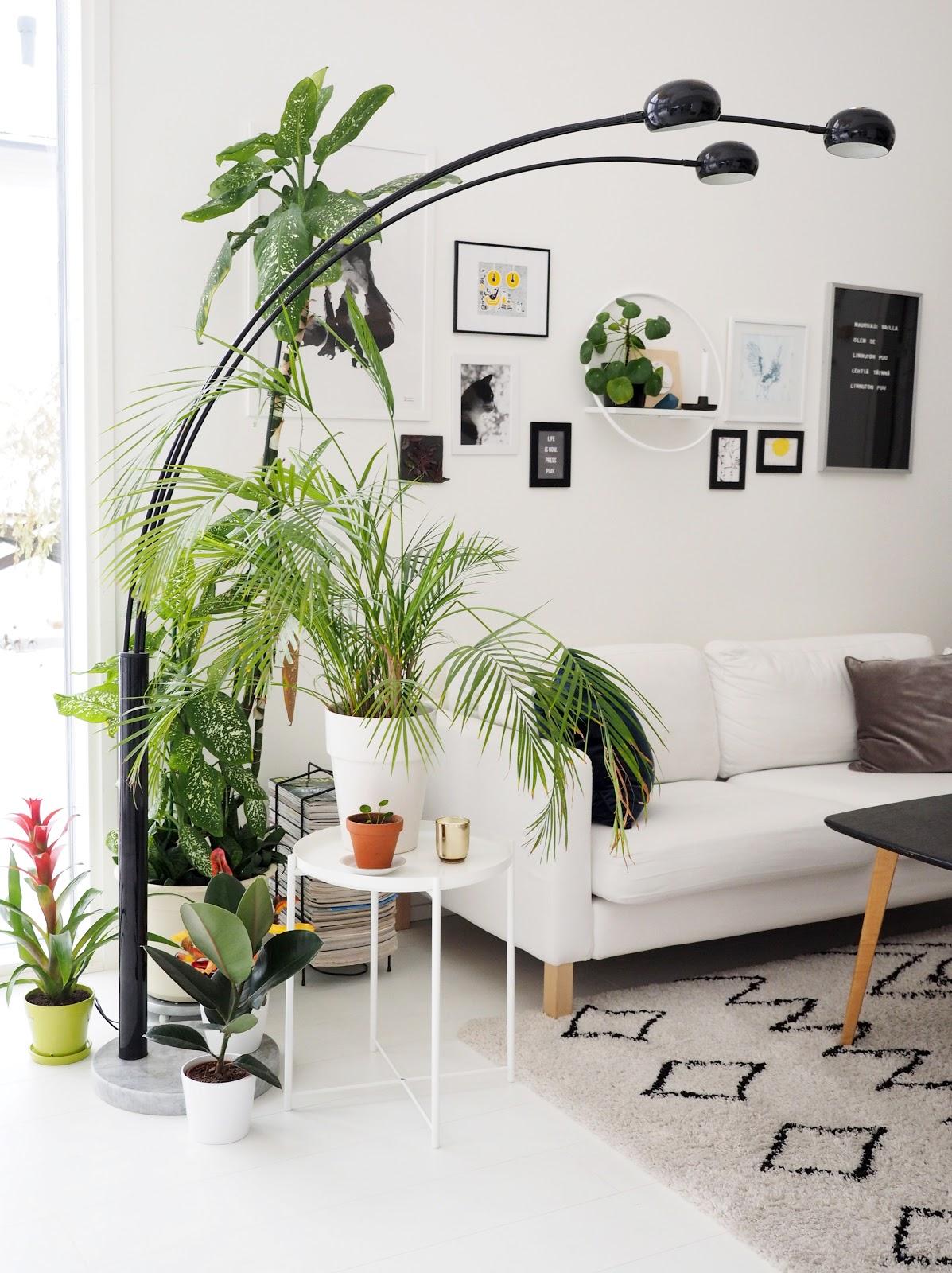 Olohuone, jalkalamppu, viherkasvi
