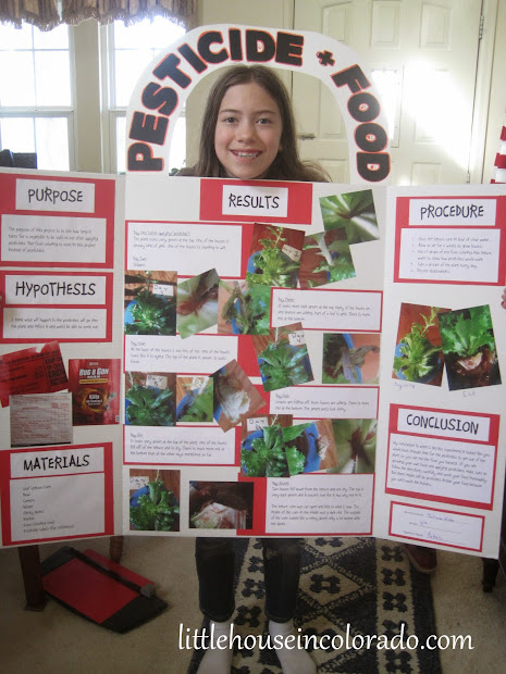 Little House In Colorado 4th Grade Science Fair Project