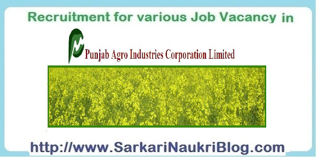 Naukri Vacancy Recruitment PAICL Chandigarh