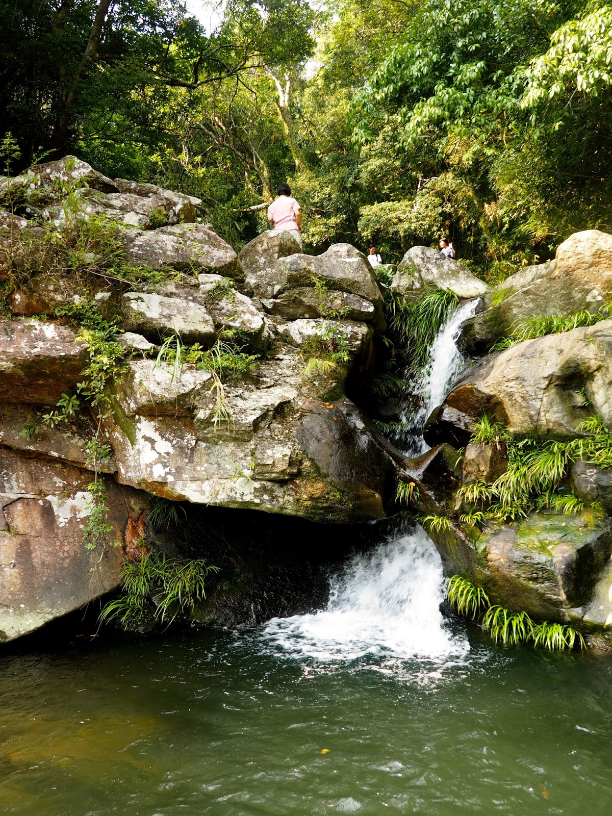 Waterfall Hidden in a Cove Photograph by Juanita McCoy |Small Cove Waterfall