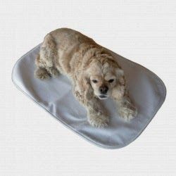 Giveaway, prepper giveaway, achy paws self-warming pet mat, arthritis in dogs