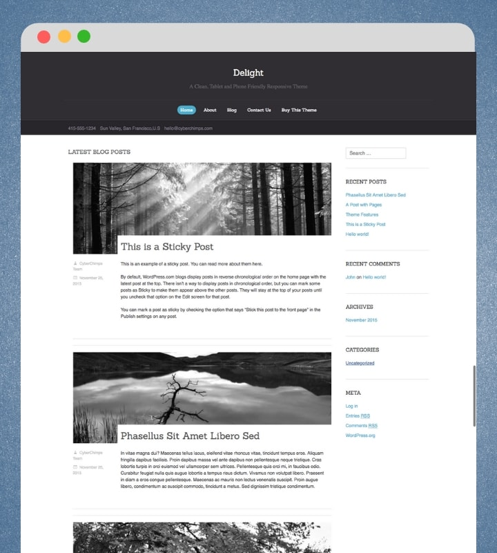 Delight (Personal Blog WordPress Theme)