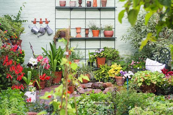 model taman rumah dengan taman penuh bunga