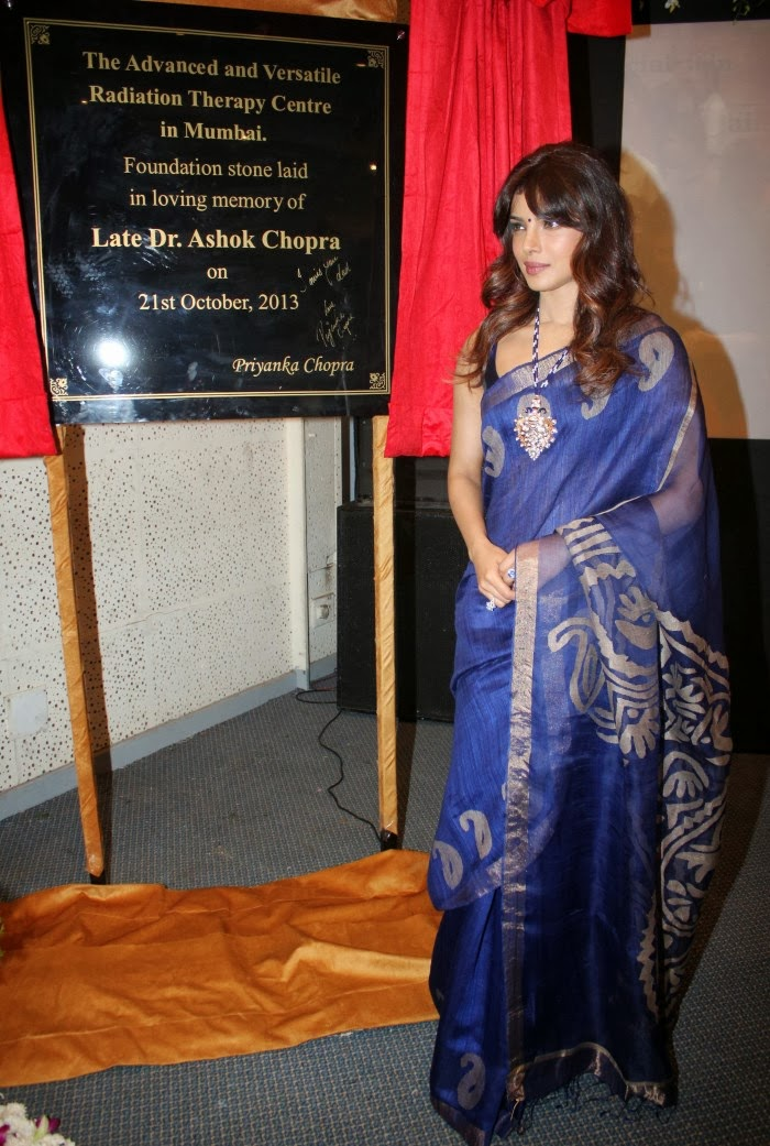 Priyanka Chopra Latest Photos In Blue Saree - Hot Blog Photos-7057