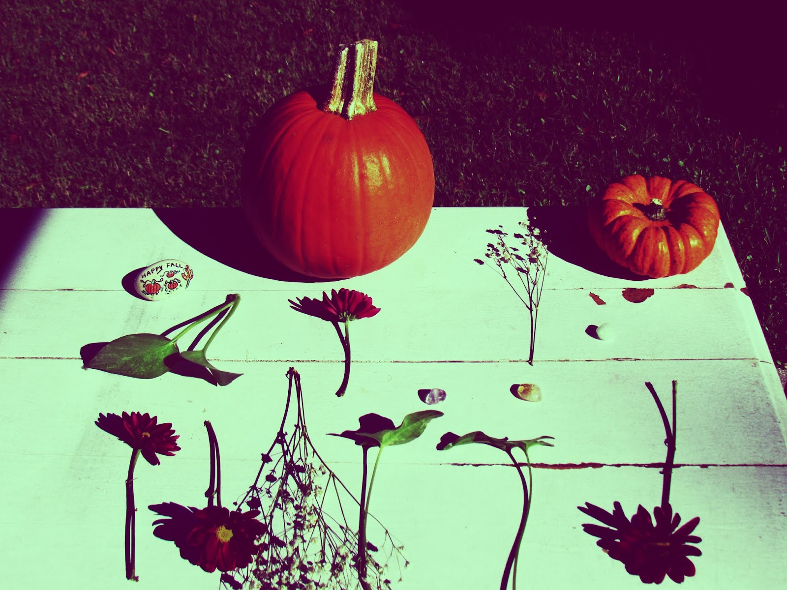 Green Wedding Design and Outdoor Fall Display + Floral Art Design