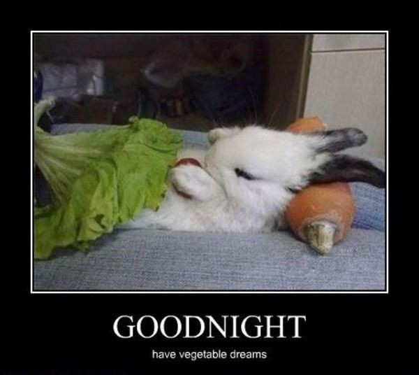 Good Night Have A Vegetable Dreams Funny Image, Meme
