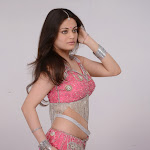 Sneha Ullal hot saree stills