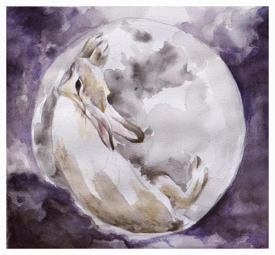 [ NOVIDADE ] A EU ♥ DORAMAS | FANSUB VAI MUDAR DE NOME! Rabbit_moon_by_donguri7-d3fj53g
