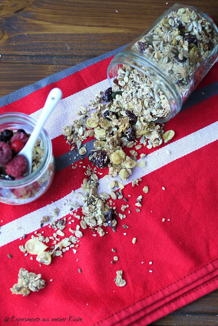 Experimente aus meiner Küche: Knuspermüsli mit Cornflakes, Cranberries und Kern-Mix