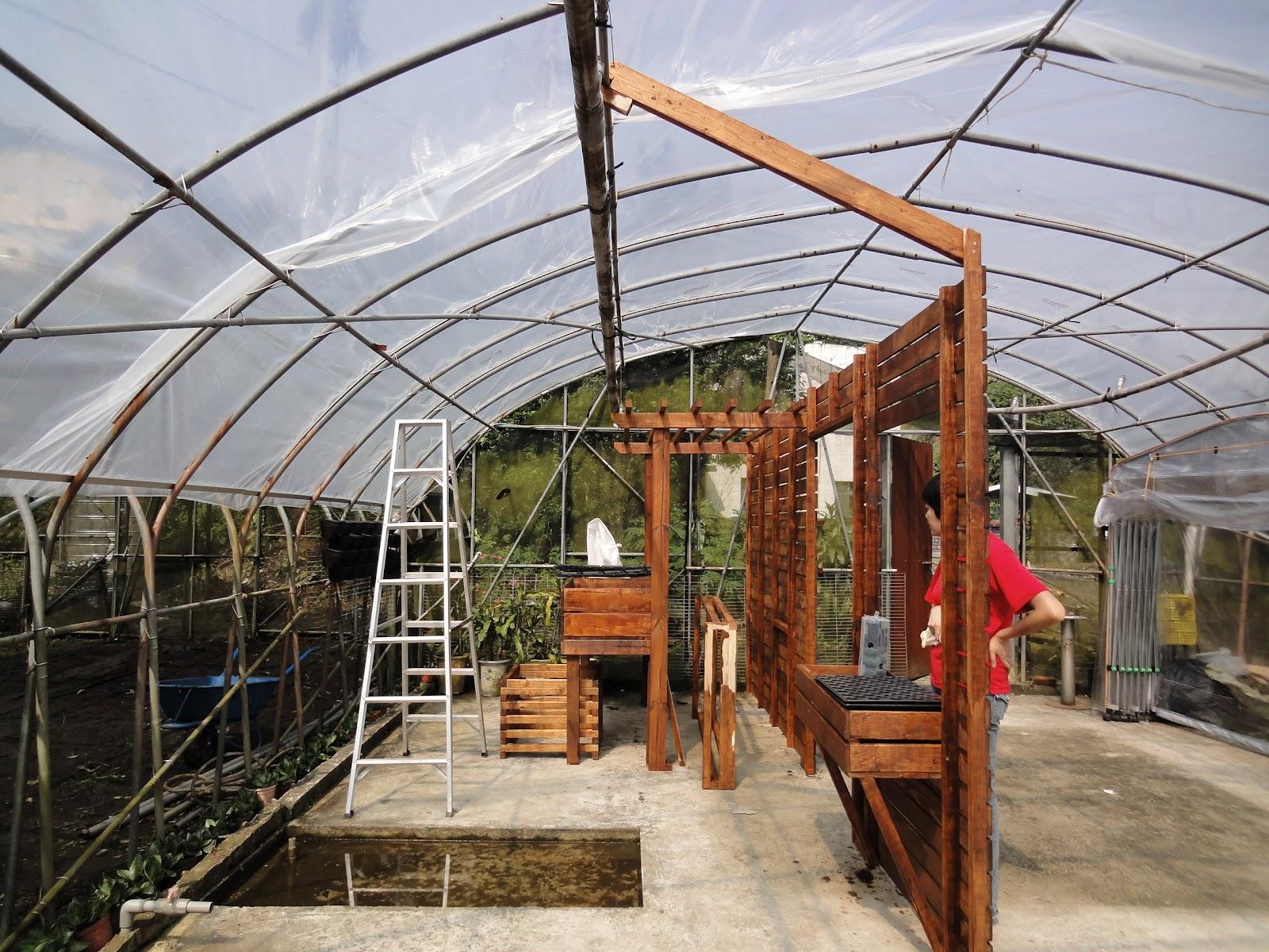 AVATA魚菜共生/Aquaponics Taiwan: 屈尺農場(三) My AP farm in Taiwan 3