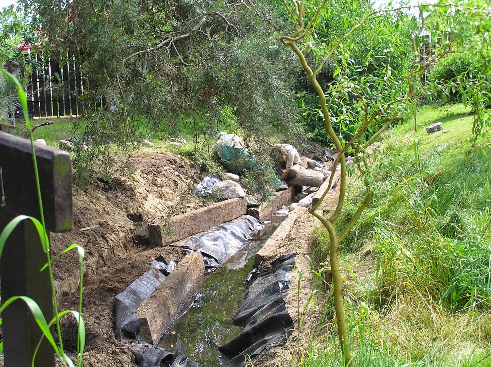 strumień w ogrodzie