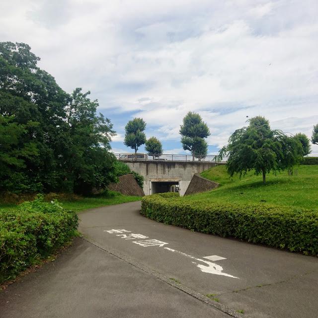多摩川サイクリングロード 福生南公園