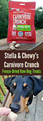 doberman rescue dog raw freeze dried treats stella chewy