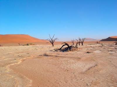 Faktor Cuaca Iklim Suatu Tempat