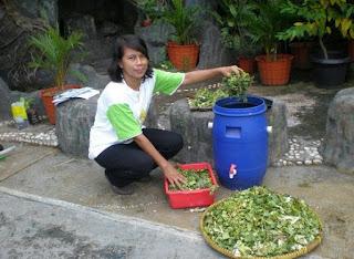 cara mengolah sampah organik dan anorganik,cara mengolah sampah organik menjadi kerajinan,Cara mengolah sampah organik menjadi barang bermanfaat,cara mengolah sampah organik menjadi kompos,