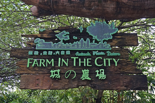 Farm In The City, Seri Kembangan.