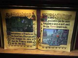Sleeping Beauty Disneyland Book