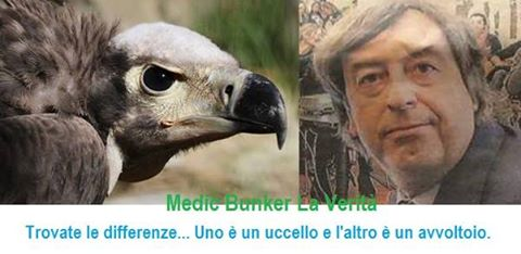 roberto-burioni-uccello-avvoltoio-differenze