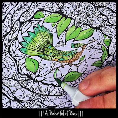 A Pocketful of Pens Books of Coloring Pages for Adults Hummingbird to Color in