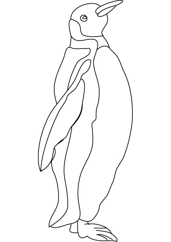 penguin coloring book pages - photo#49