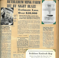 A page from the Taylor scrapbook containing an article about a mink farm fire.