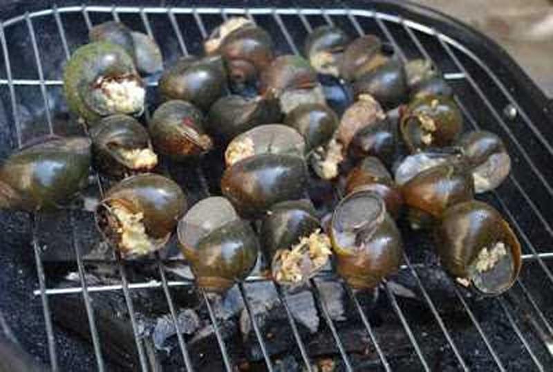 Sán lá phổi tiềm ẩn trong món ăn tôm cua ốc nướng