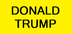 11-Donald-Trump-Logo.png