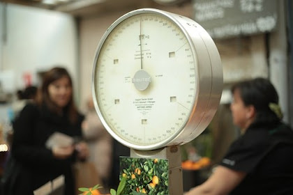 Portion Sizes – The Secret to Weight Loss