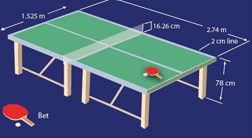 Ukuran Lapangan Tenis Meja Standard Nasional dan Internasional