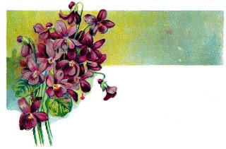 flower image corner digital design illustration