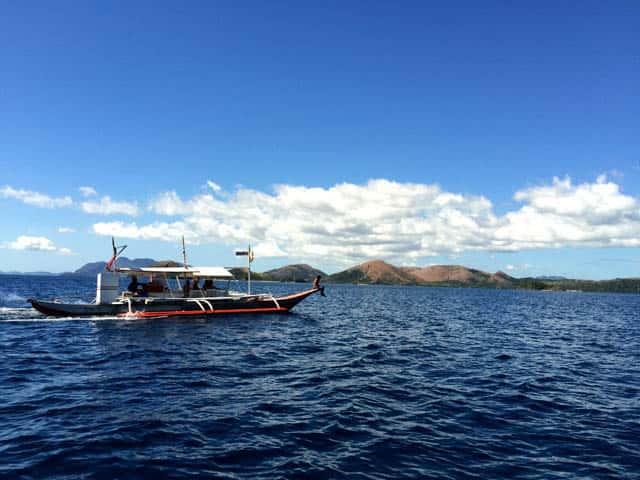 A View of Malcapuya Island