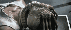 Facehugger from the movie Alien.