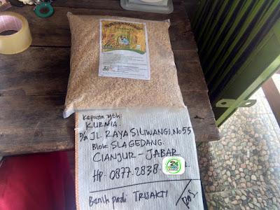 Benih pesana pertama   2,5 kg  KURNIA Cianjur, Jabar.   (Sebelum Packing)