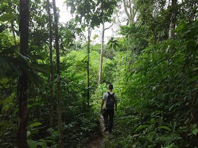 Enric, la pareja de Nerea, en un paseo por la selva amazónica.