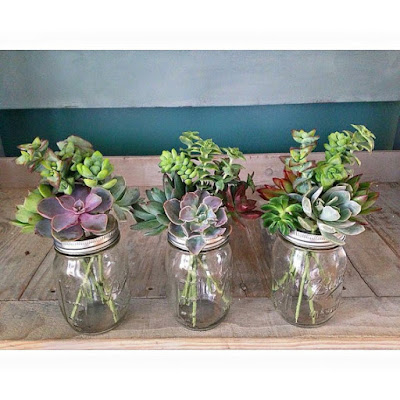 Mason Jar Succulent Bouquets centerpiece shabby chic simple planter pink purple green