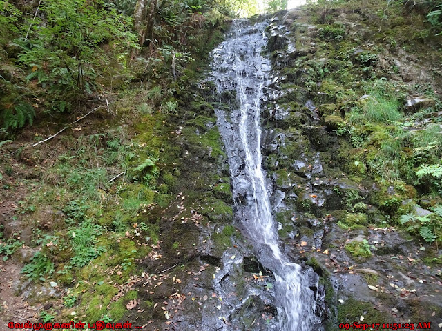 Bridge Creek Falls Tillamook Oregon