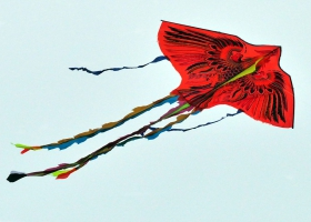 Picture of a religious kite.