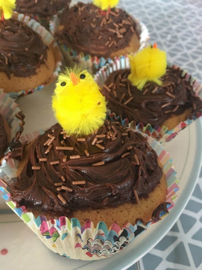close-up-of-cup-cake-in-Disney-Store-case-chocolate-icing-and-sprinkles-topped-with-Easter-yellow-fluffy-chick