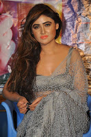 Actress Sony Charistha Latest Pos in Silver Saree at Black Money Movie Audio Launch  0006.jpg