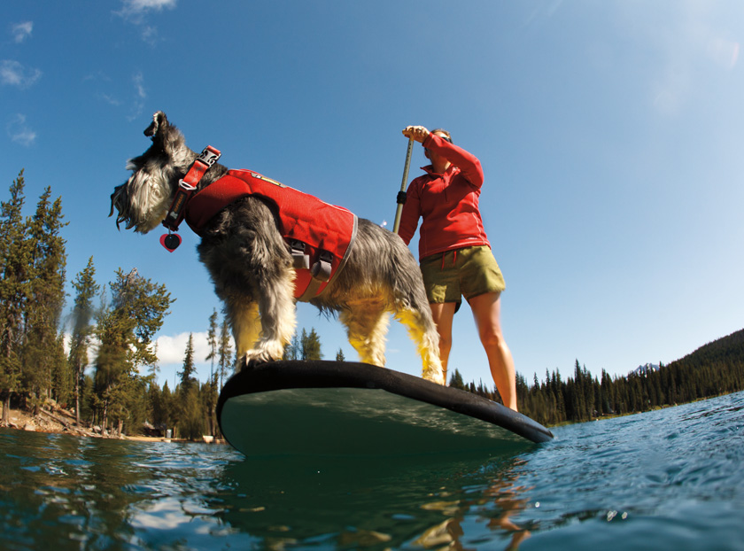 Ruffwear-K9-Float-Coat-dog-life-jacket