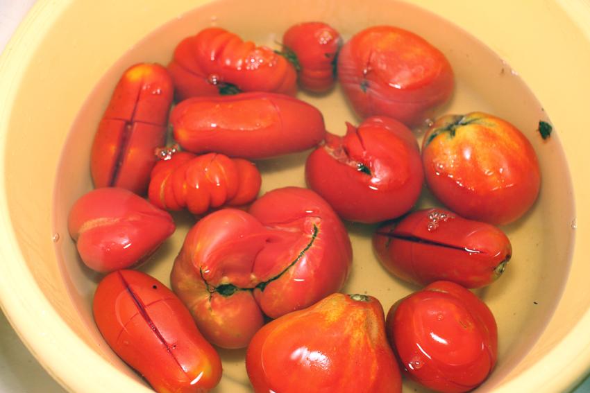 Jak przyszykować włoski sos?