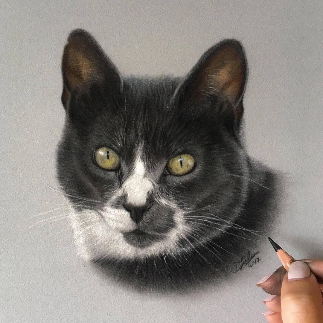 08-Misty-the-Cat-Danielle-Fisher-Realistic-Animal-Portrait-Pastel-Drawings-www-designstack-co