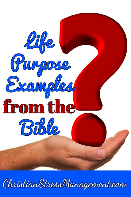 Life Purpose Examples from the Bible