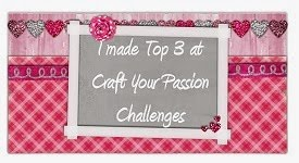 TOP 3 WINNER  CRAFT YOUR PASSION