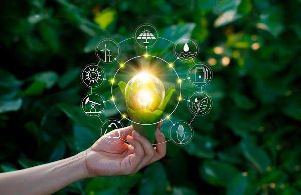 Curso sobre oportunidades de negocio en mercados de energía
