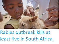 https://sciencythoughts.blogspot.com/2018/03/rabies-outbreak-kills-at-least-five-in.html