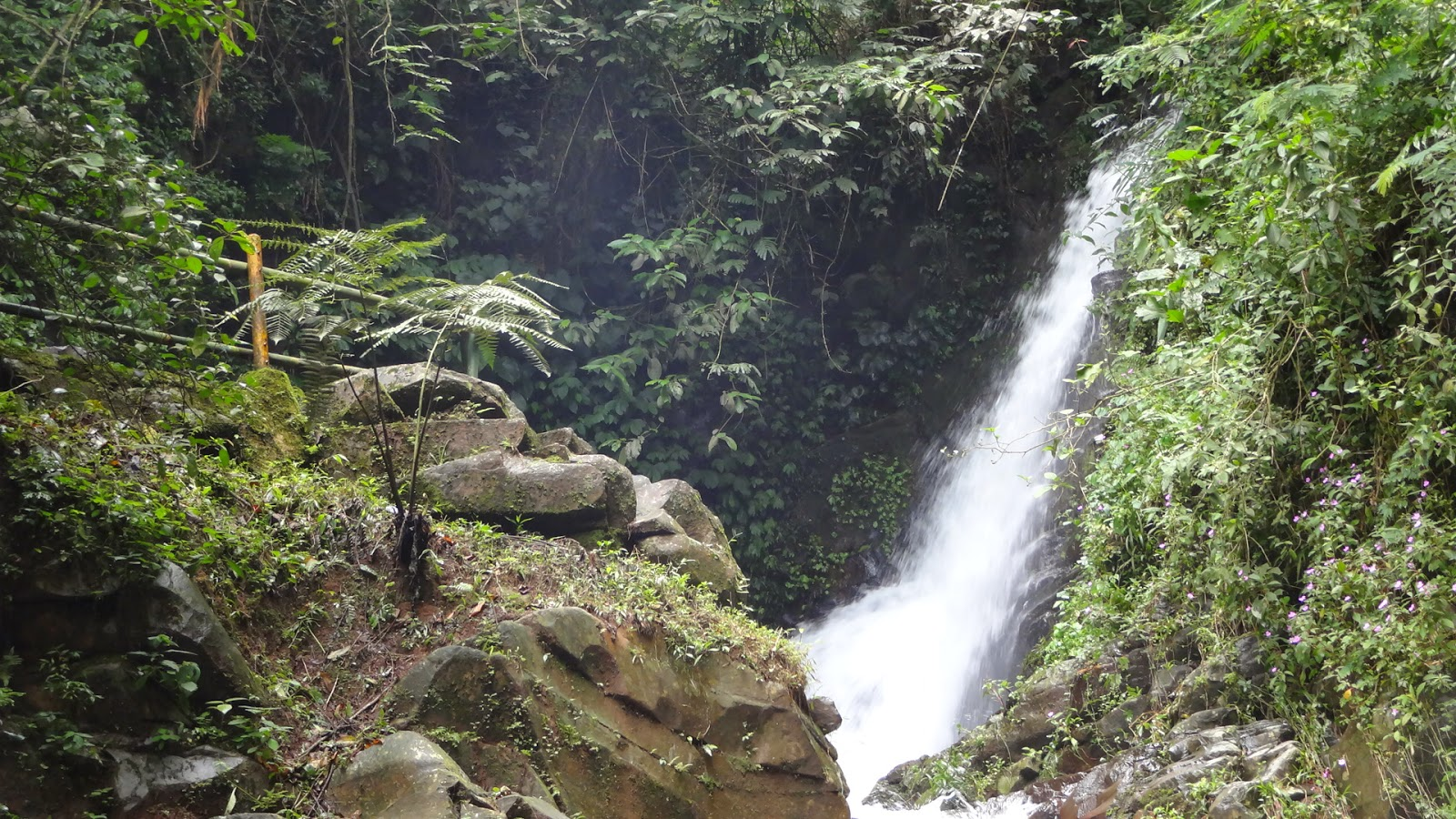 Capolaga Adventure Camp Surganya Tempat Wisata Di Subang